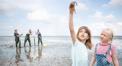 Das Bild zeigt eine Wattszenerie. Im Fordergrund stehen zwei Mädchen, das linke der beiden hält einen Regenwurm hoch. Im Hintergrund stehen unscharf eine Wissenschaftlerin und zwei Wissenschaftler, die Wattforschung betreiben. Foto: Daniel Obradovic © Uni Kiel